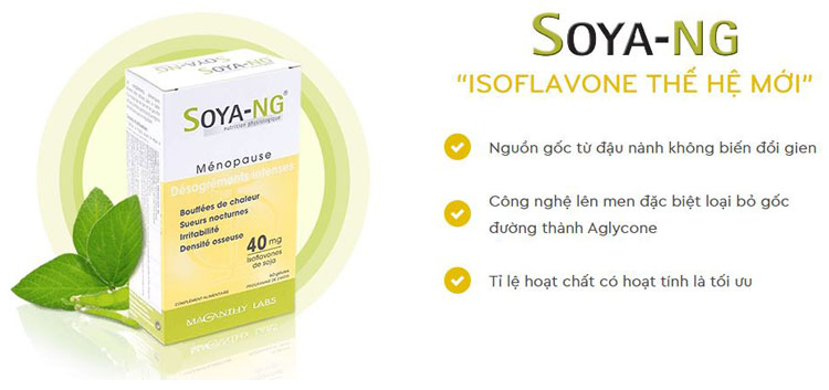 Soya-ng là nguồn bổ sung Isoflavone, một hoạt chất có cơ chế hoạt động giống estrogen giúp tăng cường nội tiết tố nữ.